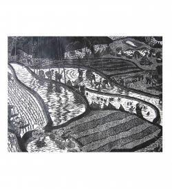 Chinese Rice Fields woodblock Maoist era