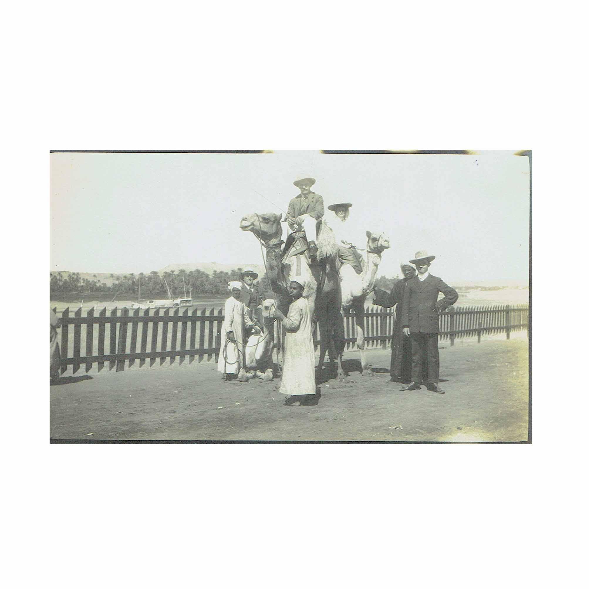 5567 Album Foto Auersperg Aegypten 1908 1909 5 A N