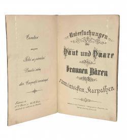 reytag Braunbaer Karpaten 1885 Titel offen