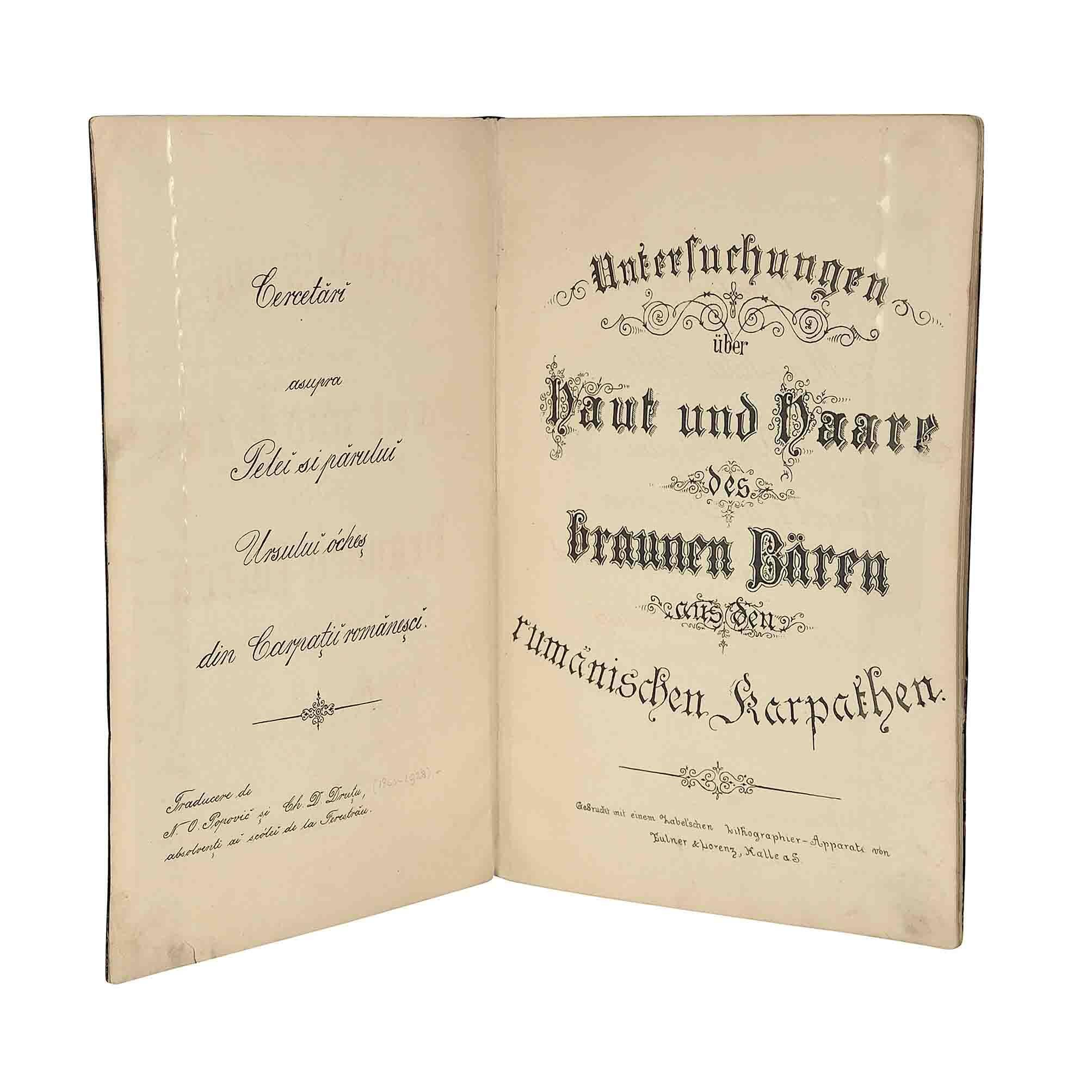 5520 Freytag Braunbaer Karpaten 1885 Titel offen A N