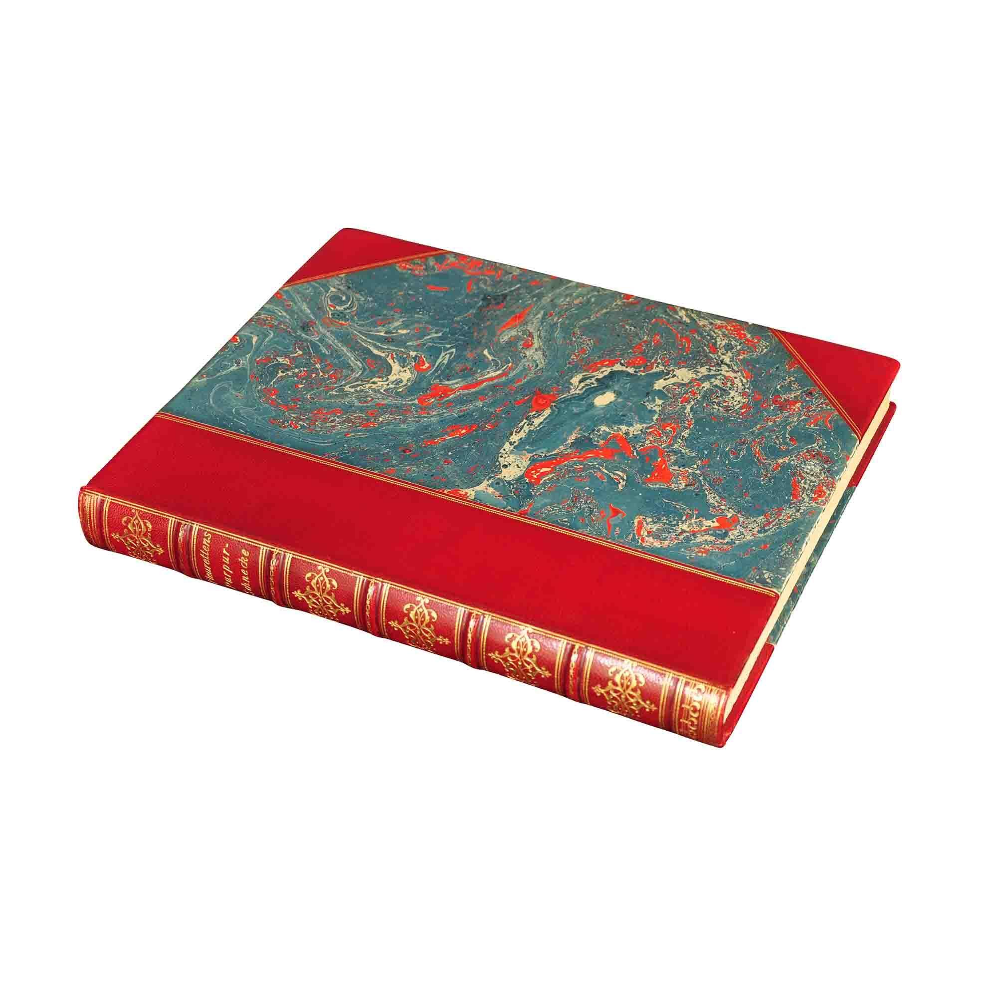 5698 Bayros Purpurschnecke 1905 Cover N