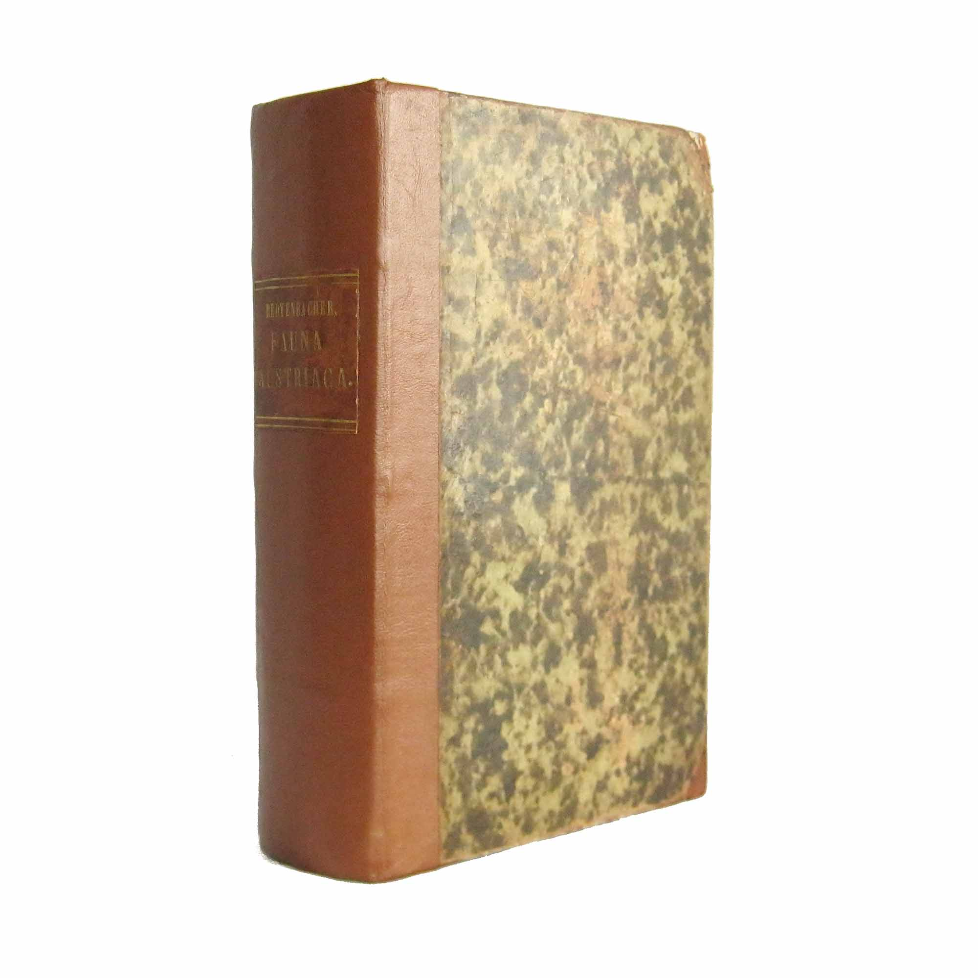 1099-Redtenbacher-Fauna-Austriaca-1858-Einband-frei-N.jpg