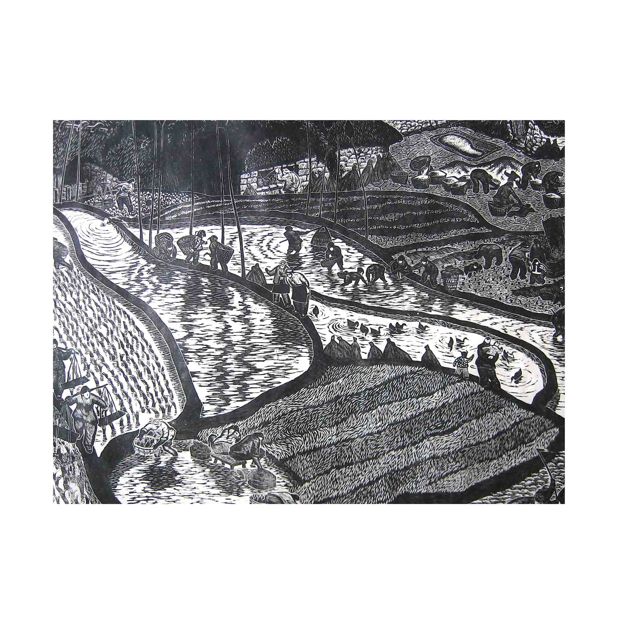 5538-Chinese-Rice-Fields-woodblock-A-N.jpg