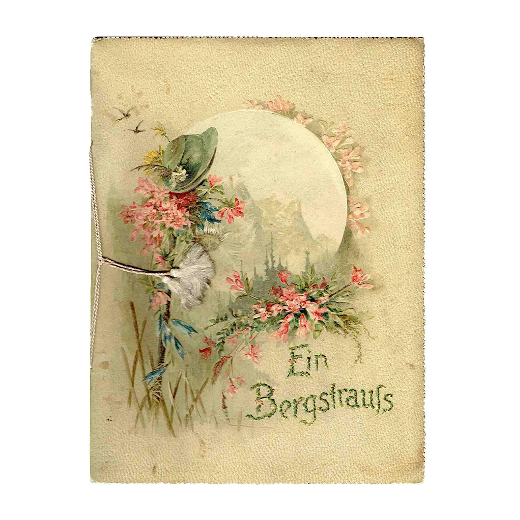 5798-Mayer-Bergwald-Nikitini-Bergstrauss-1898-Einband-frei-2-N.jpeg