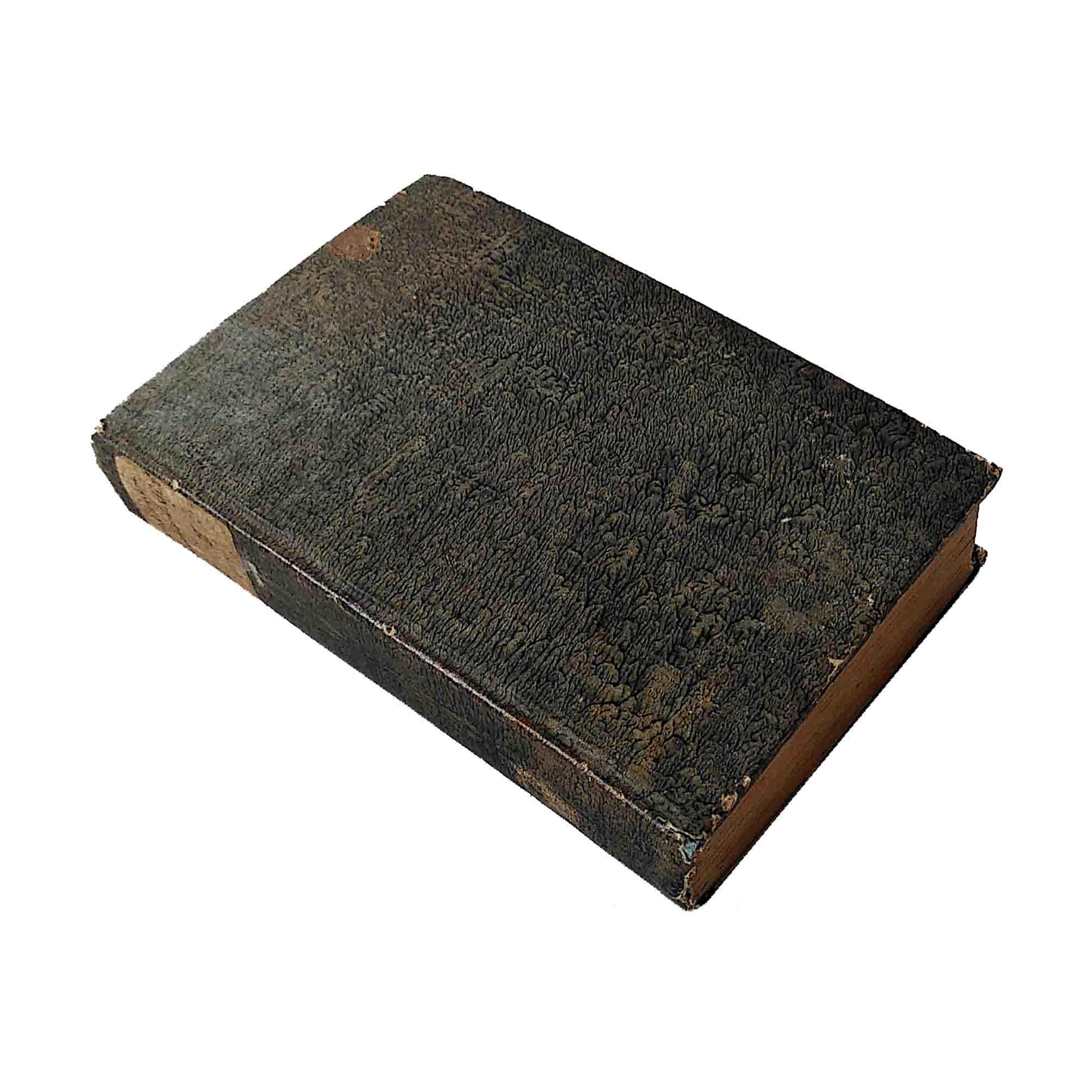 5839-Horwath-Statik-Mechanik-1809-1810-Einband-recto-Ruecken-frei-A-N.jpg