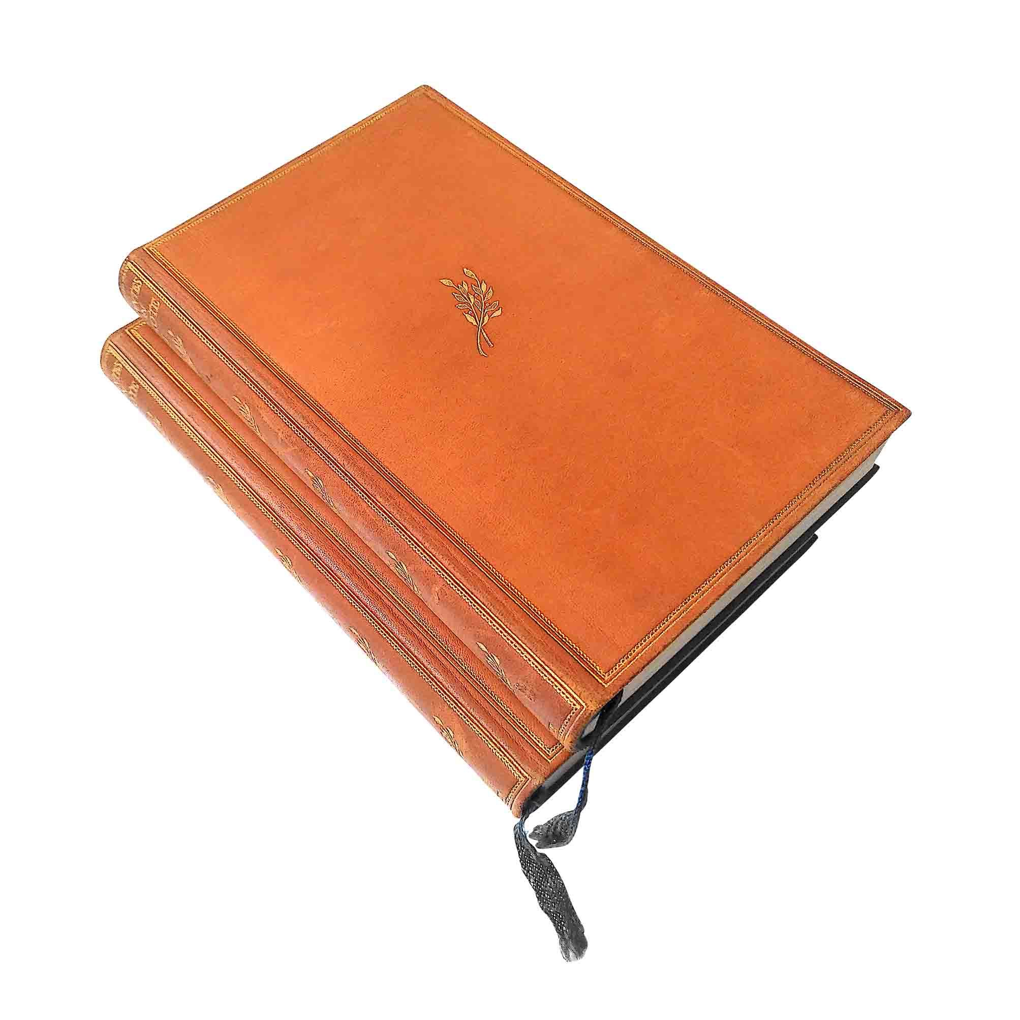 6019 Cervantes Don Quixote Insel Leder 1924 Einbände Rücken frei A N